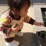 初めてのお靴を履いて遊ぶ赤ちゃん